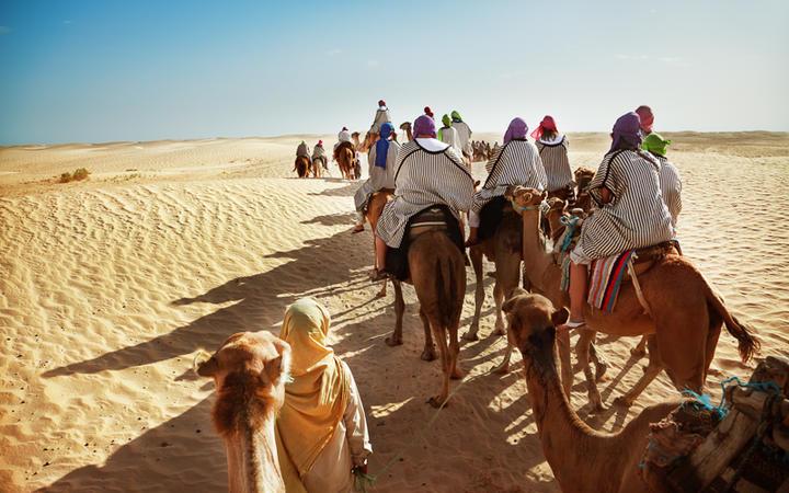 Kamel-Trekking durch die Wüstenlandschaft, Tunesien © Adisa / Shutterstock.com