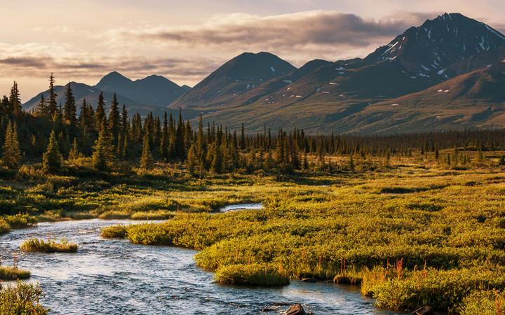 Serenity See © Galyna Andrushko / Shutterstock.com
