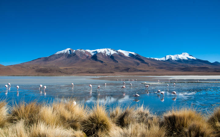 Blaue Lagune, Bolivien © Christian Kohler / shutterstock.com