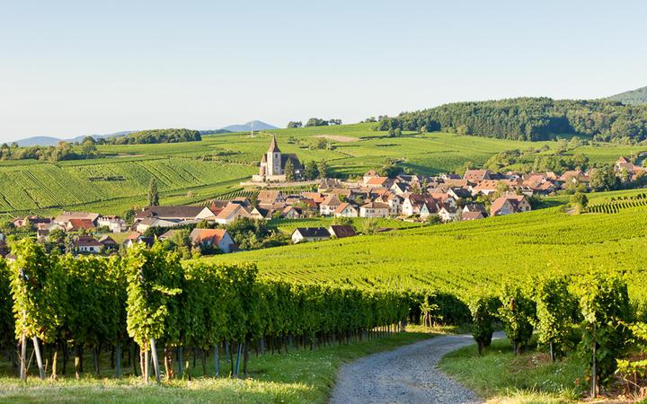 Blick auf das Winzerdorf Hunawihr © PHB.cz (Richard Semik)/ shutterstock.com