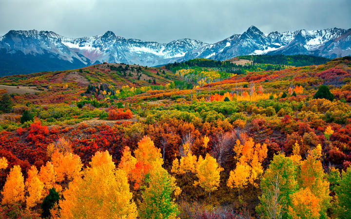 Colorado im Herbst © Peter Kunasz / Shutterstock.com