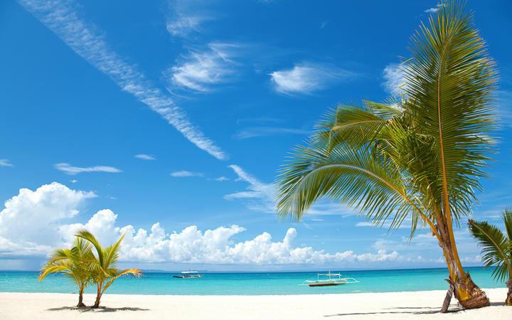 Weißer Sandstrand mit Palme auf der traumhaften Insel Bantayan © T Anderson / Shutterstock.com