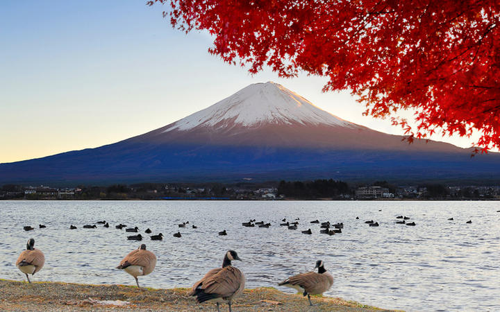 Blick auf den Berg Fuji vom See Kawaguchiko, Japan © skyearth / Shutterstock.com