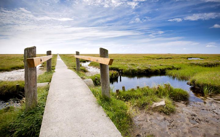 Pfad durch den Wadden See Nationalpark, Schleswig-Holstein, Deutschland © Oliver Hoffmann / shutterstock.com