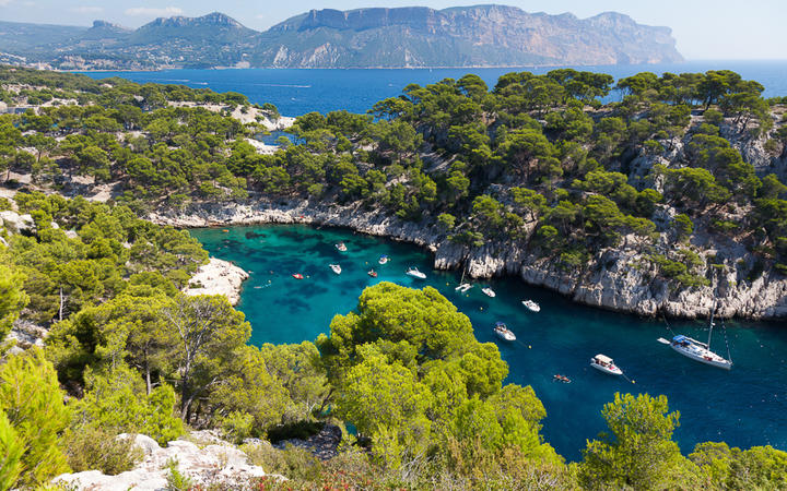 Calanque bei Port Pin in Cassis © Samuel Borges Photography / Shutterstock.com