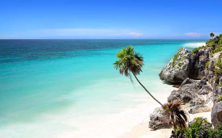 Strand in der Nähe von Tulum, ganz in der Nähe von Cancun an der Riviera Maya © Joao Virissimo / Shutterstock.com