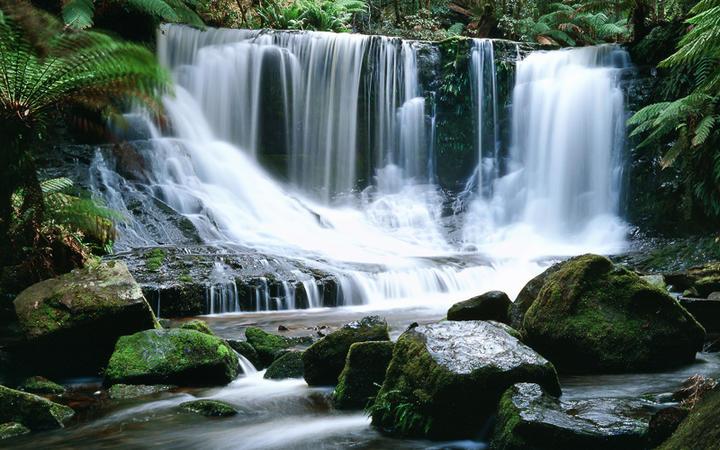 Horseshoe Wasserfälle im Mount Field Nationalpark auf der australischen Insel Tasmania © Leksele / shutterstock.com