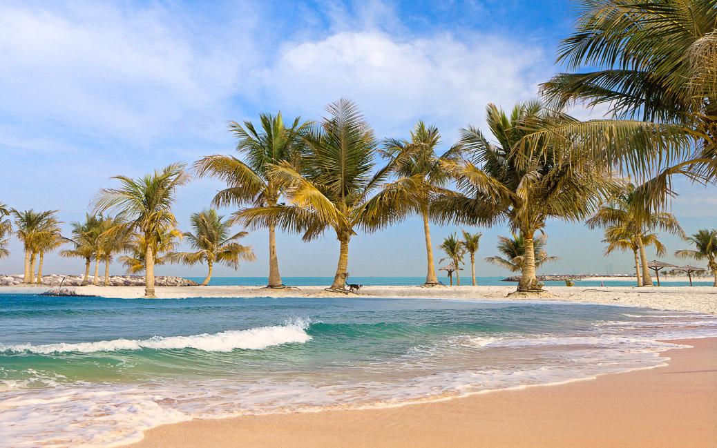 Beautiful Beach with palm tree © eleana / Shutterstock.com